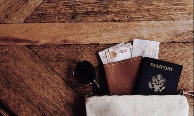 passport bag